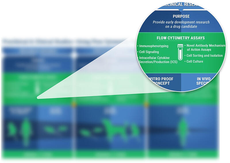Flow Cytometry In Drug Development Infographic
