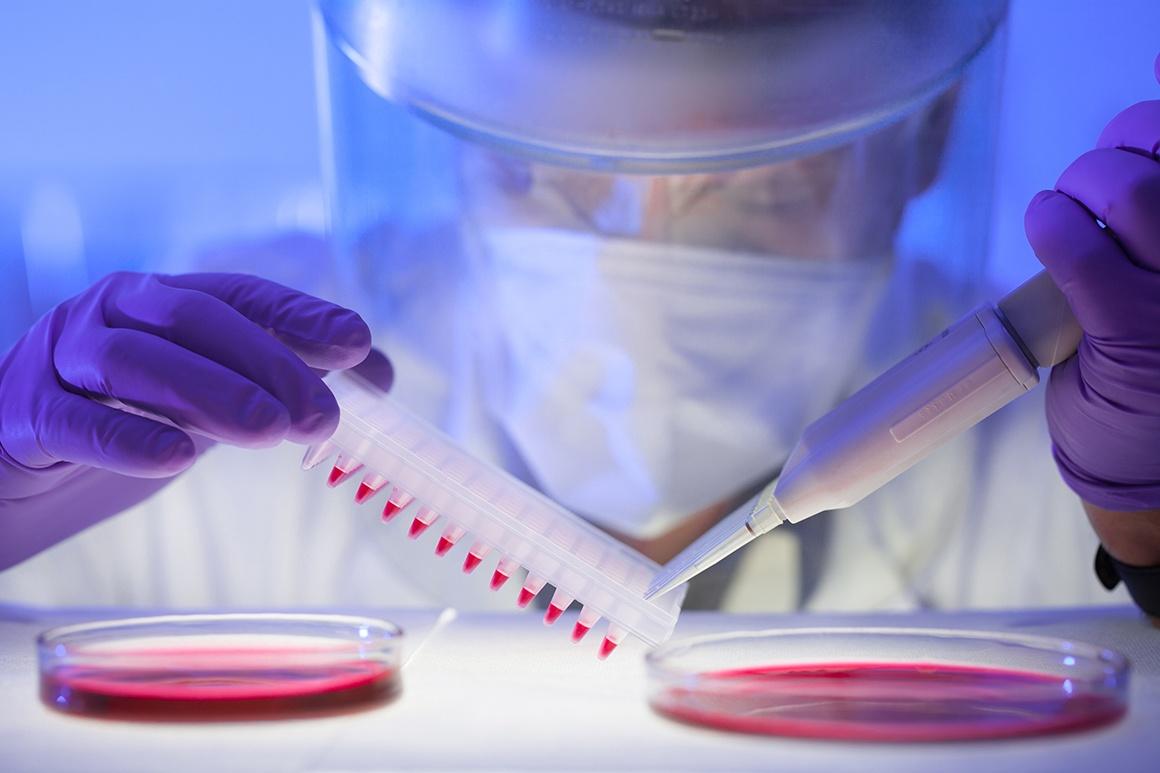 Scientist testing blood samples