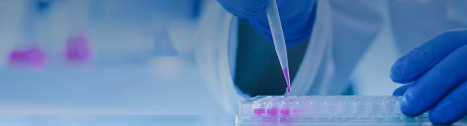 FlowMetric Cytometry Services   CRO Company