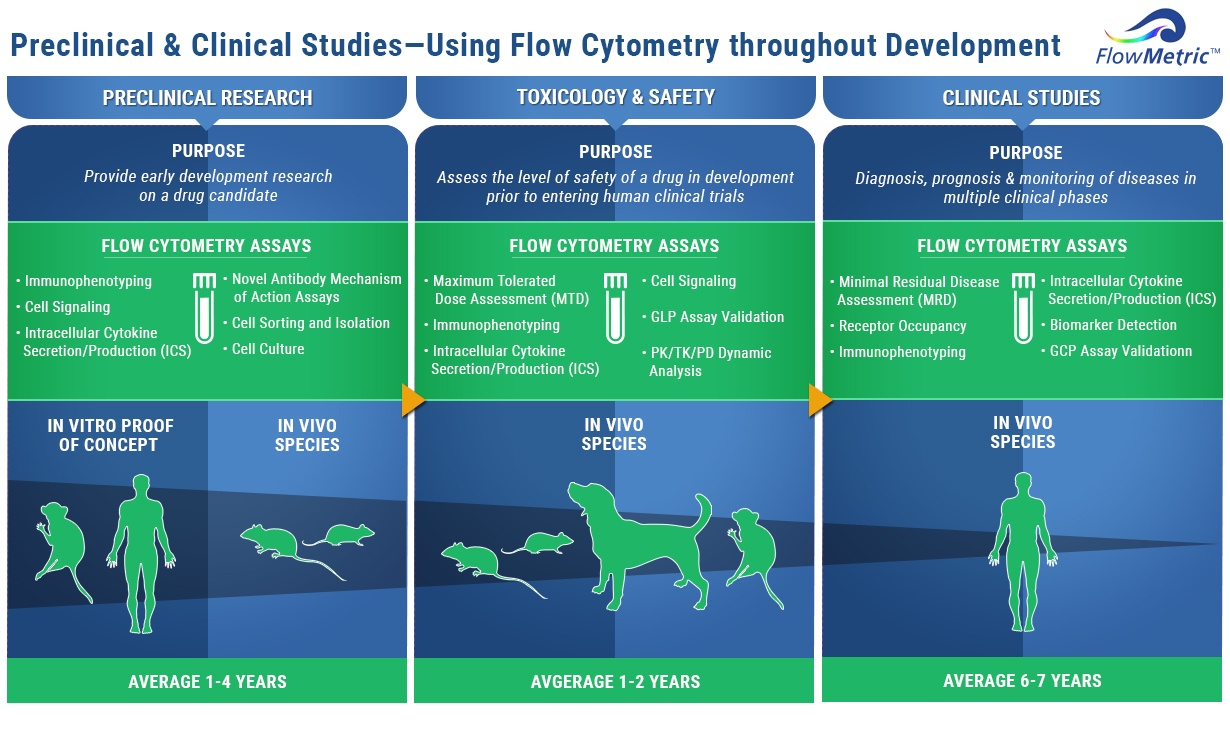 Infographic flow cytometry in drug development click here to download your flow cytometry in drug development infographic nvjuhfo Choice Image