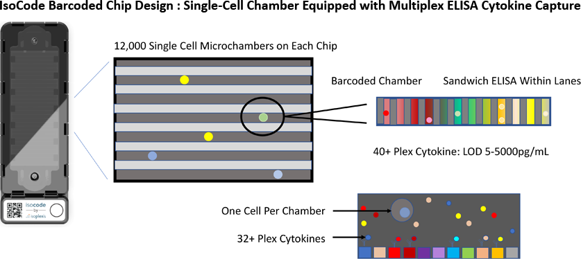 IsoCode Barcoded Chip Design: Single-Cell Chamber Equipped with Multiplex ELISA Cytokine Capture